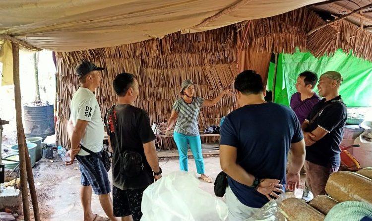 Pelatihan Budidaya Jamur Tiram Rumah Produksi RimaAih