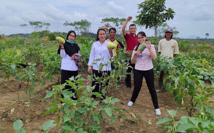 Pengembangan Koperasi Pertanian di Kabupaten Landak Dalam ...